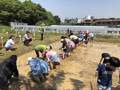 이번 주말에 어디가지? 서울시, 21개 공원서 128개 봄 프로그램