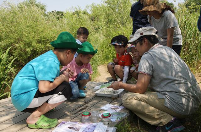 7월 열대야 한강에서 날리자~! 서울시, 77가지 생태체험 프로그램