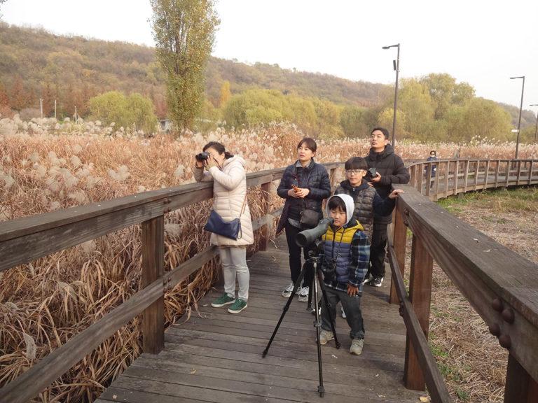 서울시, 추운겨울이 왔다∼ 한강으로 52가지 생태체험 하러가자!