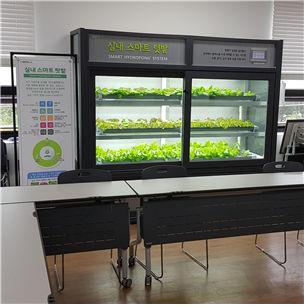 서울시, 사물인터넷으로 최적 환경 조성 `식물재배기` 보급