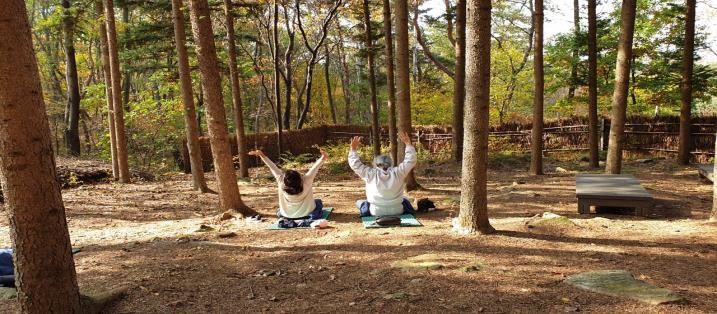 서울대공원 산림치유프로그램, 서울시 최초 환경부 우수환경교육프로그램 선정