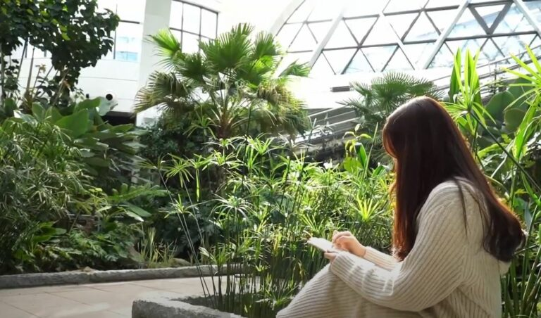 `식물원을 빌려드립니다` 서울식물원 크리에이터 공모