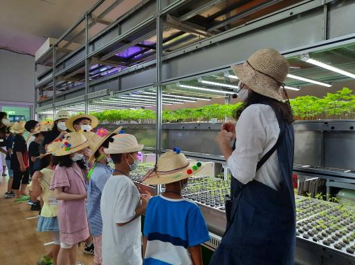 서울시, 도심 속 자연으로 토요나들이… 초등학생 가족 모집